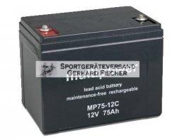 Blei/Säure-Akku Multipower MP75-12C 12 Volt, 75 Ah, 26 kg AGM-Technologie